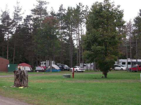 yellow-camp2