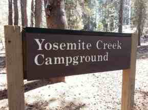 yosemite-creek-campground-yosemite-national-park-ca-04