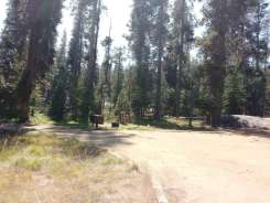 yosemite-creek-campground-yosemite-national-park-ca-10