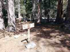 yosemite-creek-campground-yosemite-national-park-ca-14