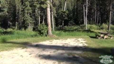 Black Fox Campground