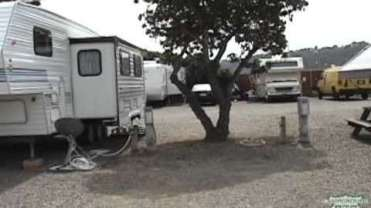 Surf & Turf RV Park