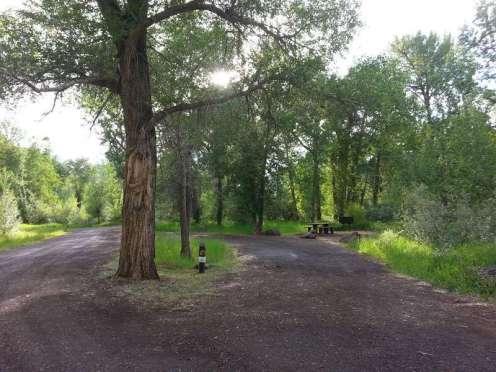 big-game-campground-cody-rv-site-pull-thru