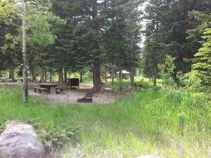 rattin-campground-red-lodge-montana-2