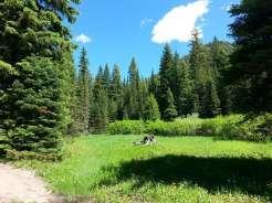 bear-creek-campground-gardiner-montana-view