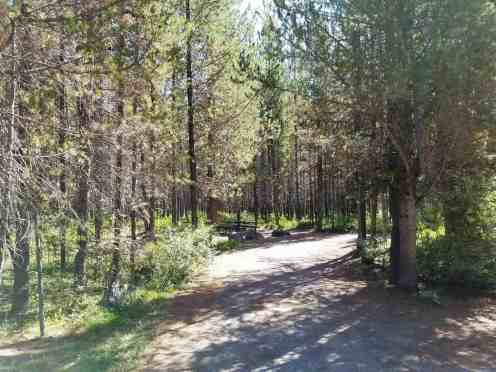 big-springs-campground-island-park-id-04