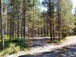 big-springs-campground-island-park-id-05