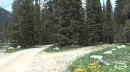 Fox Creek Campground