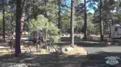 Mather Campground
