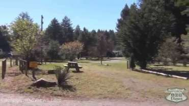 Crescent City / Redwoods KOA
