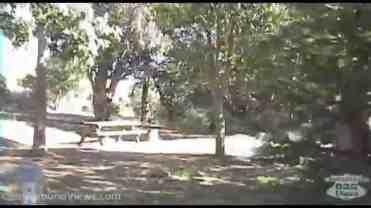 El Capitan State Beach Campground