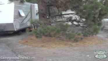 Pine Tree RV & Mobile Home Park