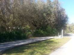 Edward Medard Regional Park Campground near Plant City Florida02