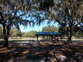 Edward Medard Regional Park Campground near Plant City Florida09