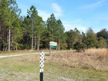 Oak Ridge Equestrian Area Campground near Thonotosassa1