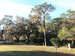 Timberlane RV Park and Resort in Bradenton4