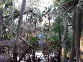 Myakka River State Park Big Flats Campground near Sarasota Florida4