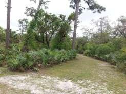 Donald MacDonald Campground Park in Sebastian Florida (Roseland)03