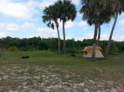 Phipps Park Campground in Stuart Florida06