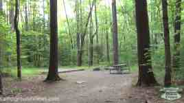 Cataloochee Campground