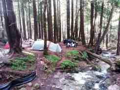 limekiln-state-park-campground-04