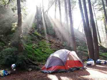 limekiln-state-park-campground-06