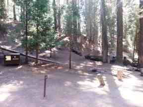 atwell-mill-campground-sequoia-national-park-12