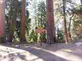 azalea-campground-sequoia-national-park-02
