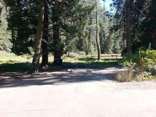 azalea-campground-sequoia-national-park-11