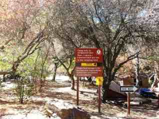 buckeye-campground-sequoia-kings-canyon-national-park-03