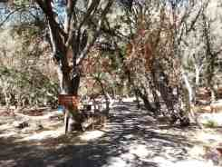 buckeye-campground-sequoia-kings-canyon-national-park-04