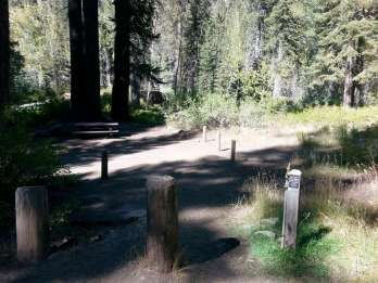 cold-springs-campground-sequoia-kings-canyon-national-park-05
