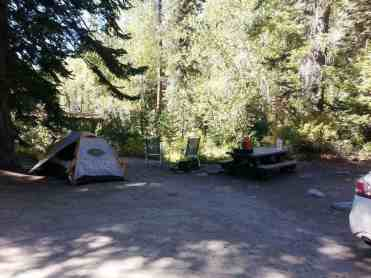 cold-springs-campground-sequoia-kings-canyon-national-park-06