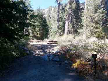 cold-springs-campground-sequoia-kings-canyon-national-park-07