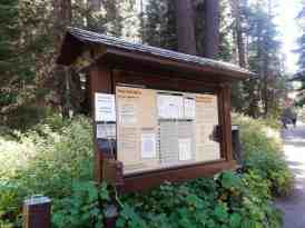 cold-springs-campground-sequoia-kings-canyon-national-park-11