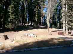dorst-creek-campground-sequoia-kings-canyon-national-park-06