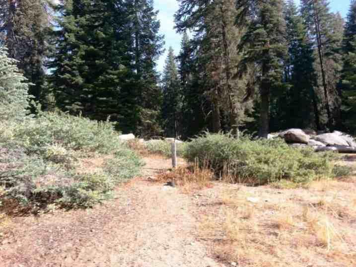 Dorst Creek Campground Sequoia National Park, California