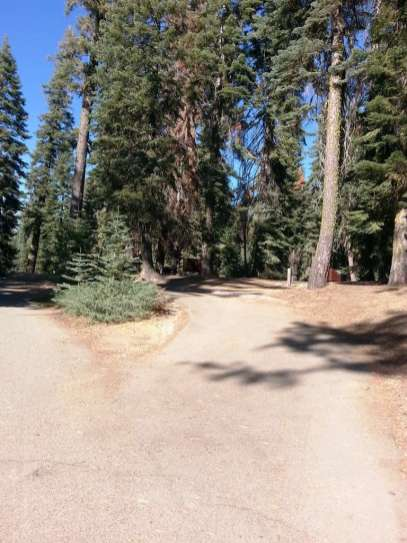 Dorst Creek Campground Sequoia National Park California