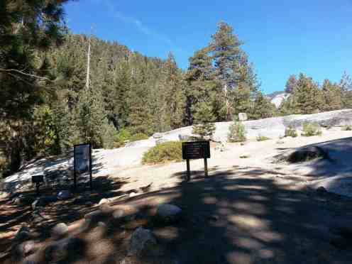 lodgepole-campground-sequoia-kings-canyon-national-park-12