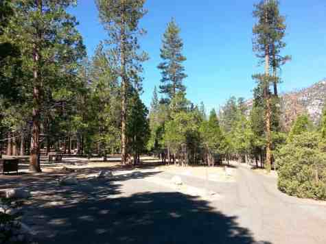 moraine-campground-sequoia-kings-canyon-national-park-02