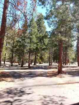 moraine-campground-sequoia-kings-canyon-national-park-05