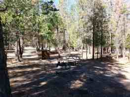moraine-campground-sequoia-kings-canyon-national-park-14