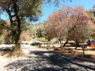 potwisha-campground-sequoia-kings-canyon-national-park-08
