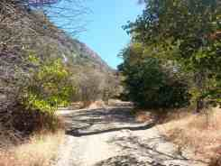 south-fork-campground-seqouia-national-park-06