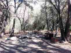 south-fork-campground-seqouia-national-park-10