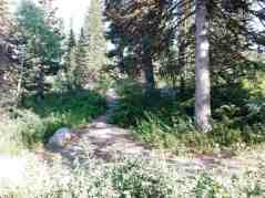 bountiful-peak-campground-wasatch-national-forest-04