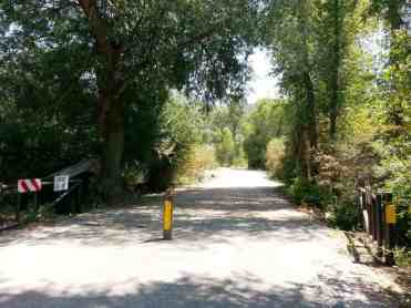 willows-campground-cache-02