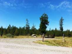 sheffield-campground-teton-forest-07
