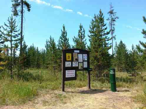 sheffield-campground-teton-forest-11