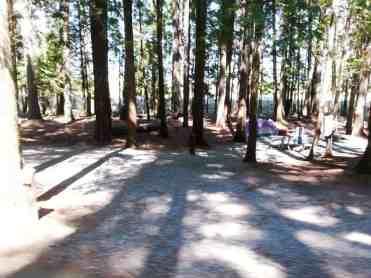 priest-river-mudhole-campground-06
